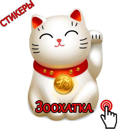 Интернет-магазин Зоохатка